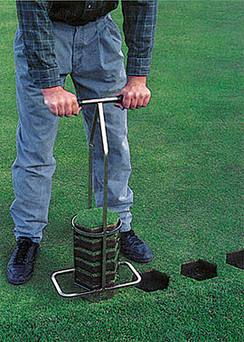 Turf-Tec International is proud to introduce the Miltona 7 Inch Hexagon Turf Plugger that has revolutionized turf repair.