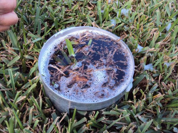 The Turf-Tec Insect Flotation Sampler can be inserted through the thatch into the soil and then filled with water. Within minutes insects will float to the surface where they can be removed or counted to make population level estimates over space and time