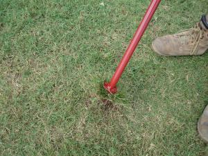 Twist handle of Turf-Tec WeedAway to loosen roots from soil.