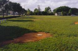 Not all ball fields are created equal, This is a private school baseball field that gets little or no maintenance during off season activity.  This is the view from home plate to third base.  The primary grass is St. Augustine.